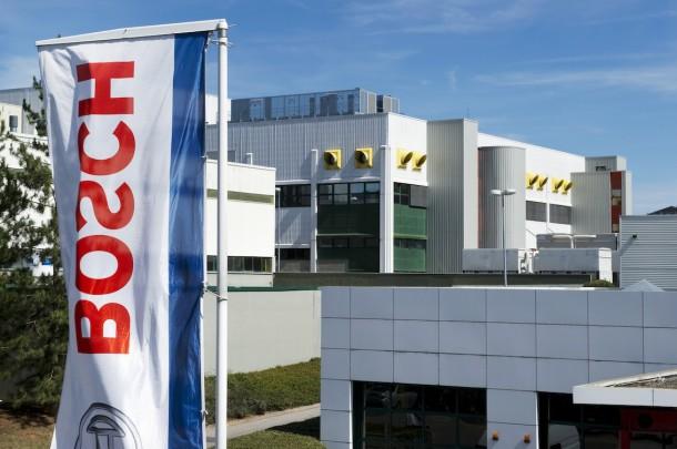 Media12-Bosch champion